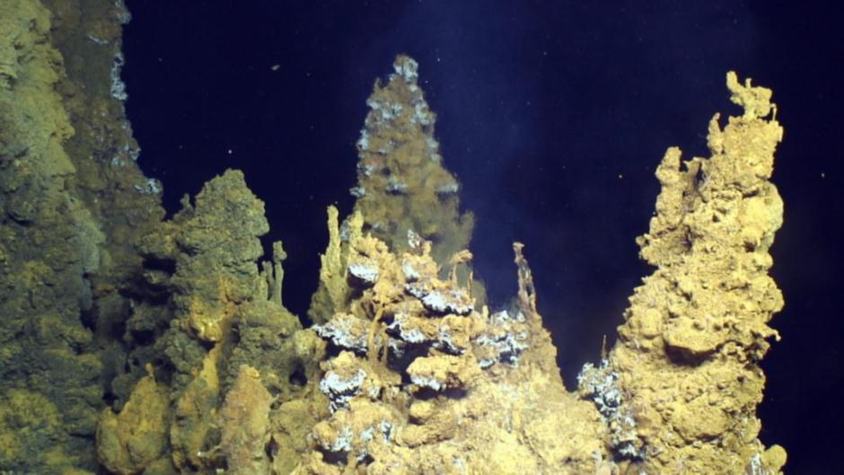 [Photo credit: Submarine Ring of Fire 2014 - Ironman, NSF/NOAA, Jason, Copyright WHOI]